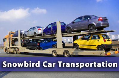 Our Car Transport Services